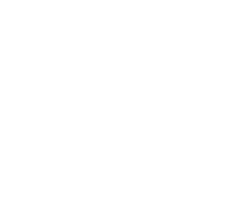 The Sinking City logo